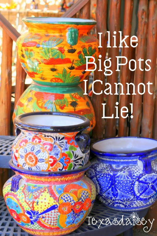 I like big pots I can not lie no matter what size, kind or color, I like big pots even crackpots!