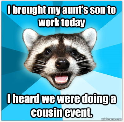 Lame Pun Raccoon on Kaizen Events lean blitz consulting meme mark graban cousin