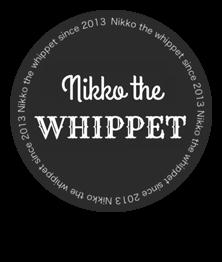 Nikko the Whippet