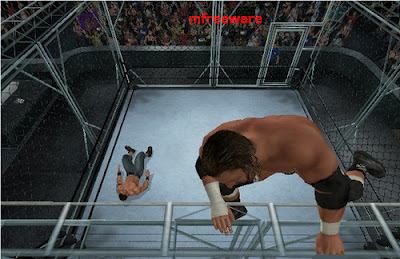 wwe raw vs smackdown 2011 PC game