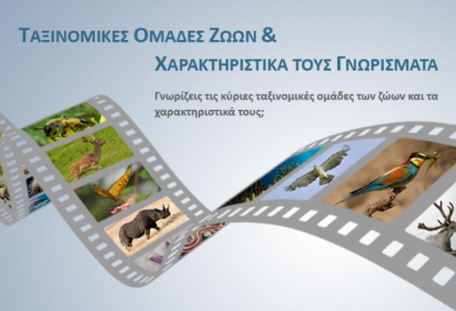 http://ebooks.edu.gr/modules/ebook/show.php/DSGL101/560/3669,15932/
