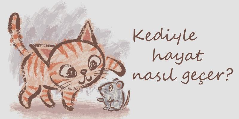 Kediyle Hayat.