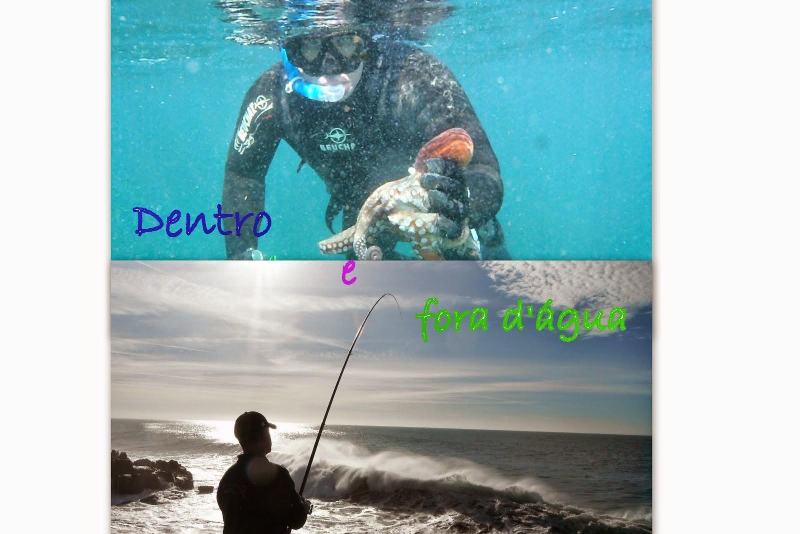 Dentro e fora d'água