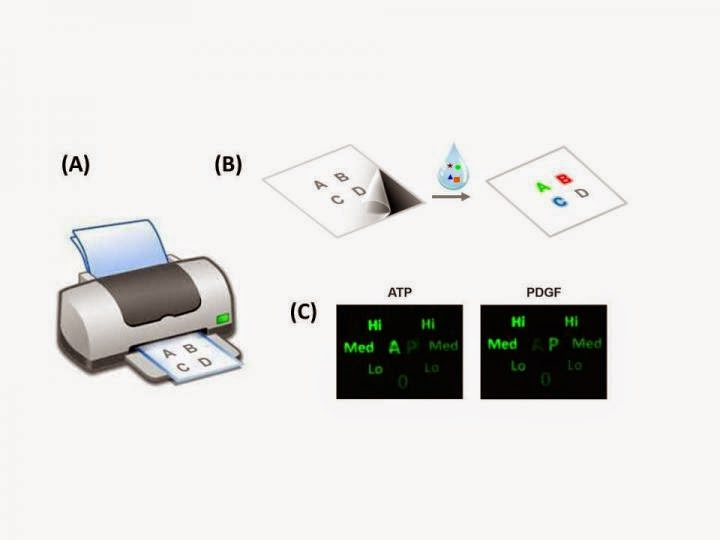 Office Inkjet Printer To Produce Tool To Identify Infectious Diseases