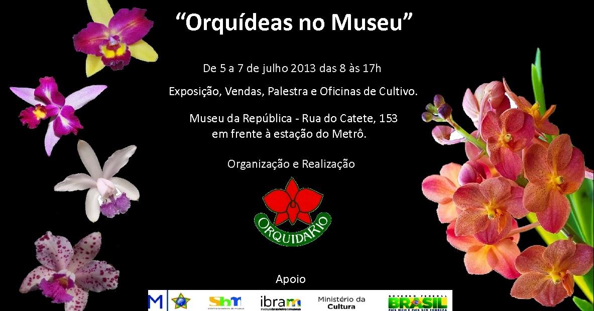 orquidÁrio dos oliveira orquÍdeas no museu setembro 2013