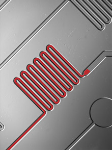 Microfluidics - Rapid Diagnostic Test