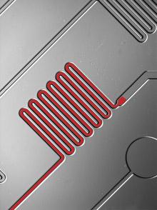 Microfluidics - Rapid Diagnostic Test
