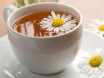 Taza de Te y Margaritas Blancas