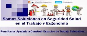 Servicios Integrales de Seguridad Salud Laboral y Ergonomía