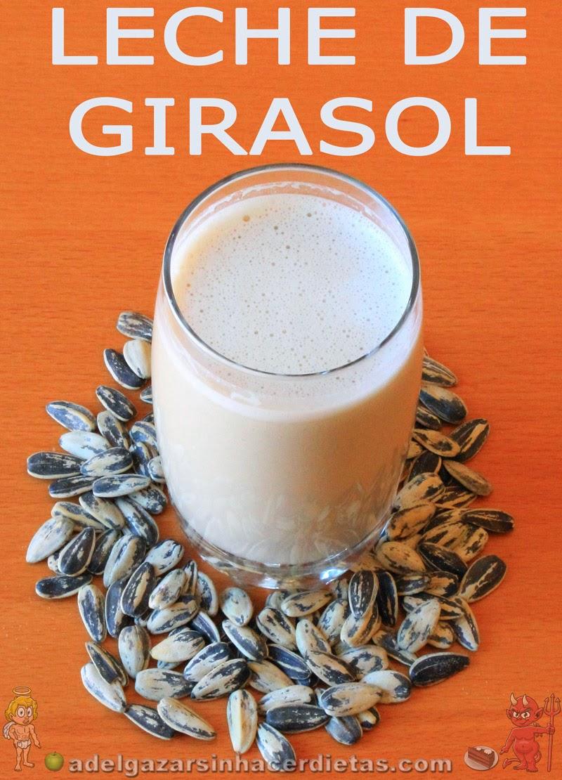 Receta saludable de LECHE U HORCHATA DE SEMILLAS DE GIRASOL casera baja en calorías y colesterol, apta para diabéticos, veganos, celíacos e intolerantes a la lactosa. LECHES VEGETALES. COCINA FÁCIL Y SANA. ¡INCLUYE VIDEO!