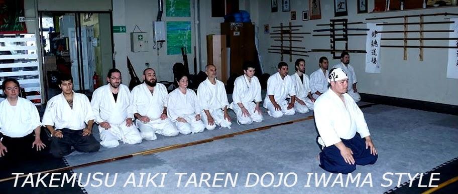 Aikido Iwama Ryu Viña del Mar, Alex Araneda N 2 dan de Aikido Iwama