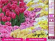 Hoa mùa xuân, game ban gai