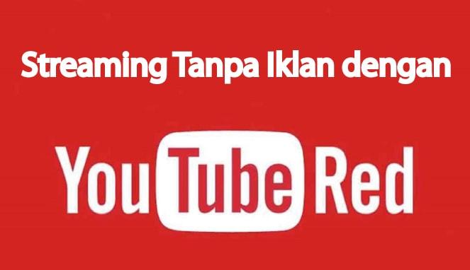 YouTube Red Cara streaming video di YouTube tanpa iklan