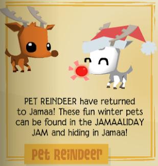 Image Result For Elf Pet Reindeer