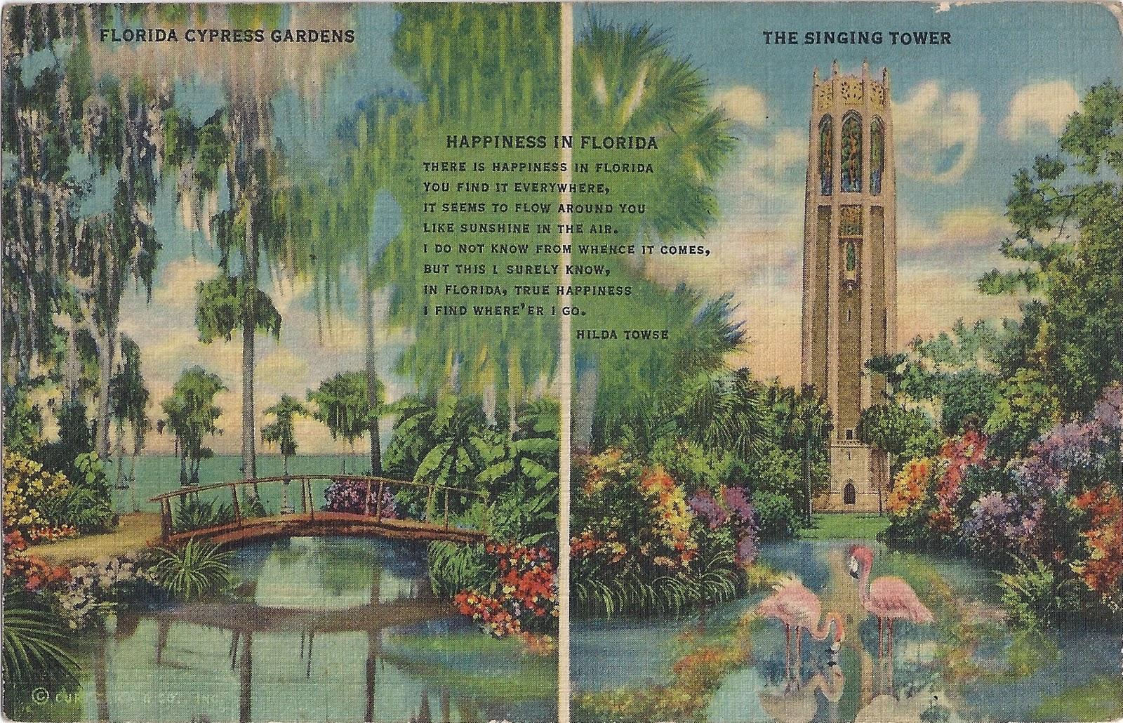 Leaping Frog Designs Free Vintage Image Florida Cypress