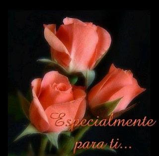Tarjetas de Cumpleaños con Rosas Rosadas
