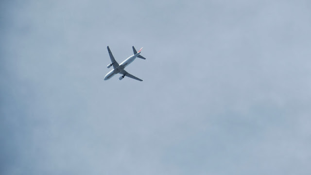 airliner canon sx50hs