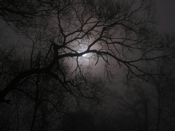 Meine Welt Schwarz Grau Weiss