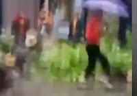 mujer se salva de morir aplastada por un árbol