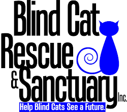 Blind Cat Rescue & Sanctuary