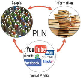 A PLN cycle