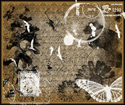 fondo grunge vintage con marcas de café y mariposa