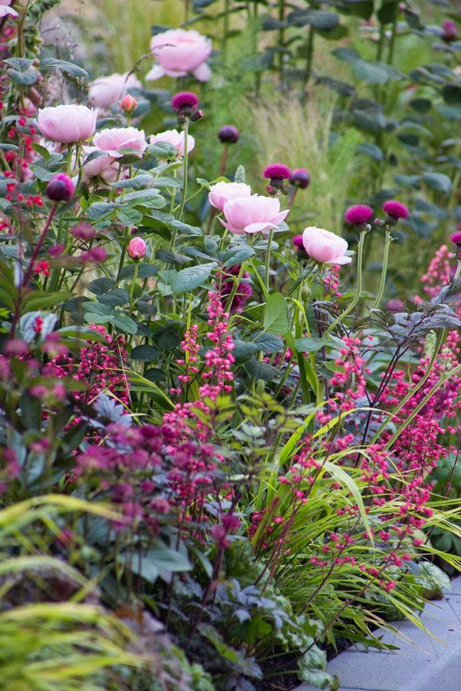 Home garden 40 inspirations pour un jardin anglais - Photos de jardins anglais ...