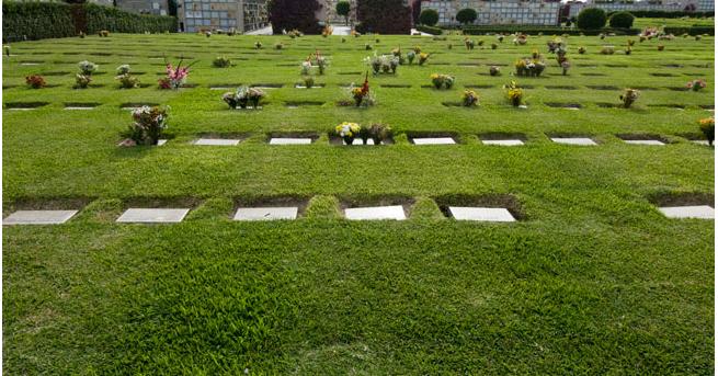 Jardines de la paz camposanto lur n for Cementerio jardin de paz