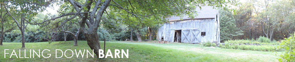 falling down barn