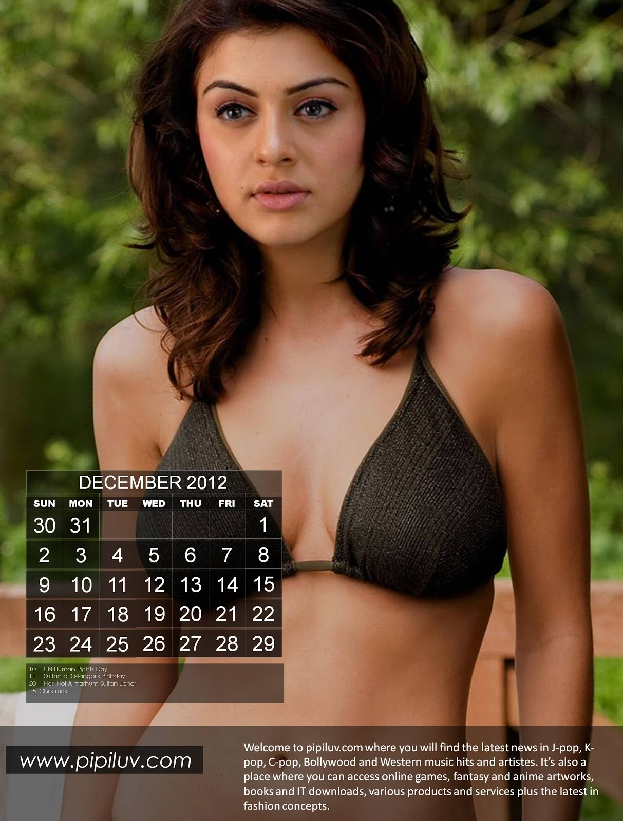Click here for more cool calendar at pipiluv.com. 2012 sexy Indian ...
