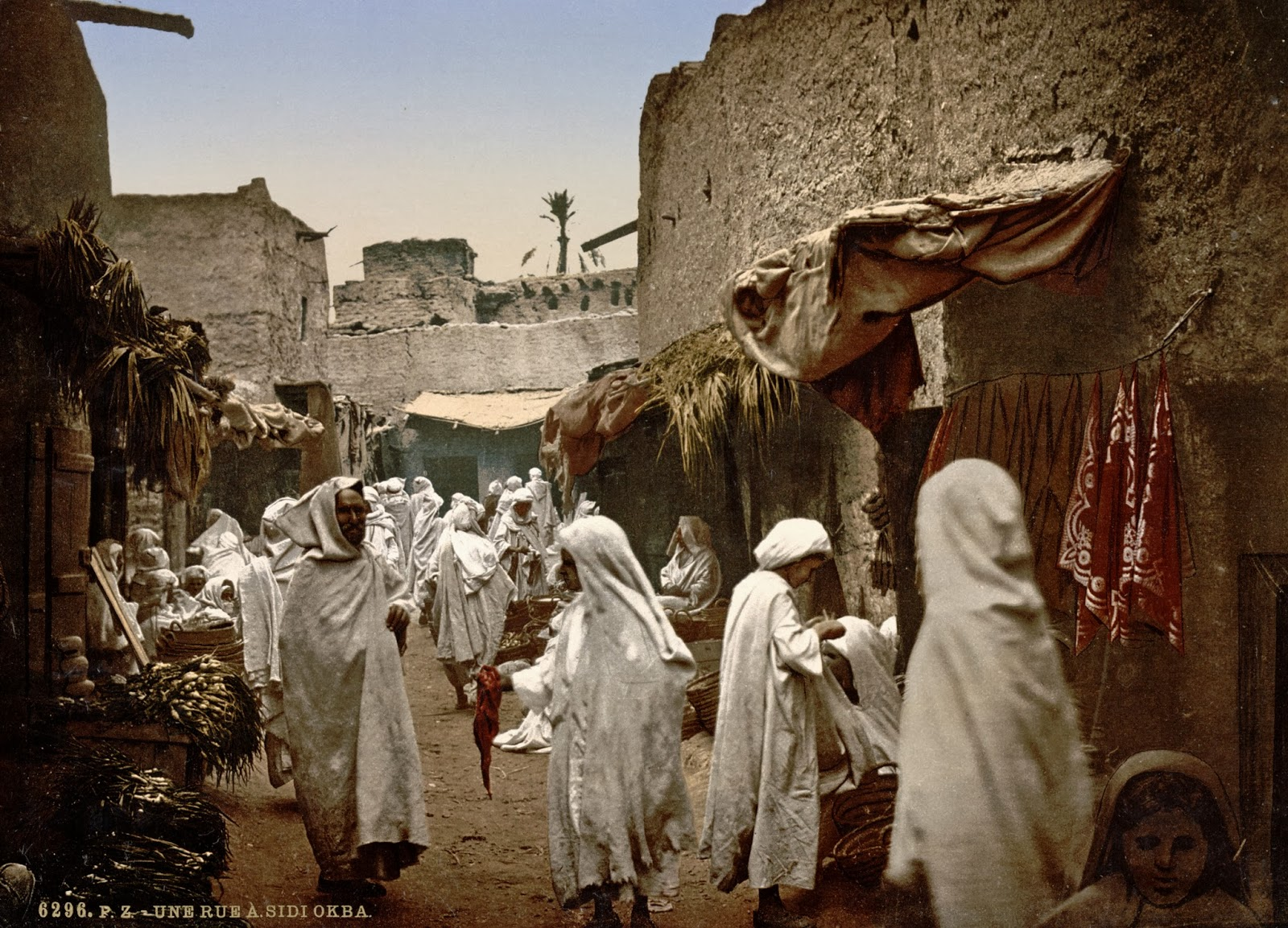history of algeria Much of the history of algeria has taken place on the fertile coastal plain of north africa, which is often called the maghreb (or maghrib.