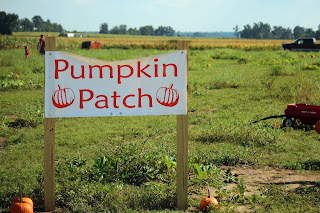 Pumpkin Patch in Milton, FL