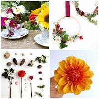 DIY Flower Inspiration Newsletter