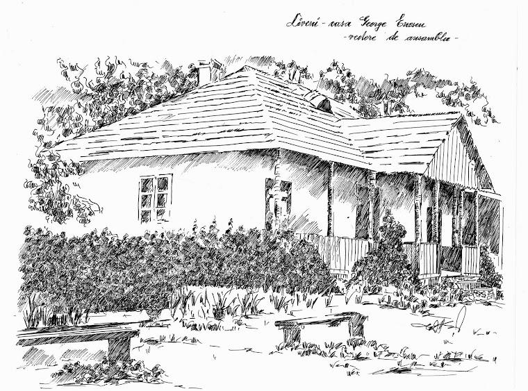 Liveni -casa lui Enescu
