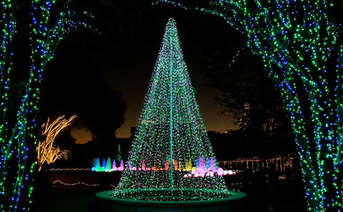 Tips to visit garden lights atlanta botanical garden the botanical gardens for Botanical gardens atlanta lights