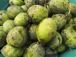 buah bacang