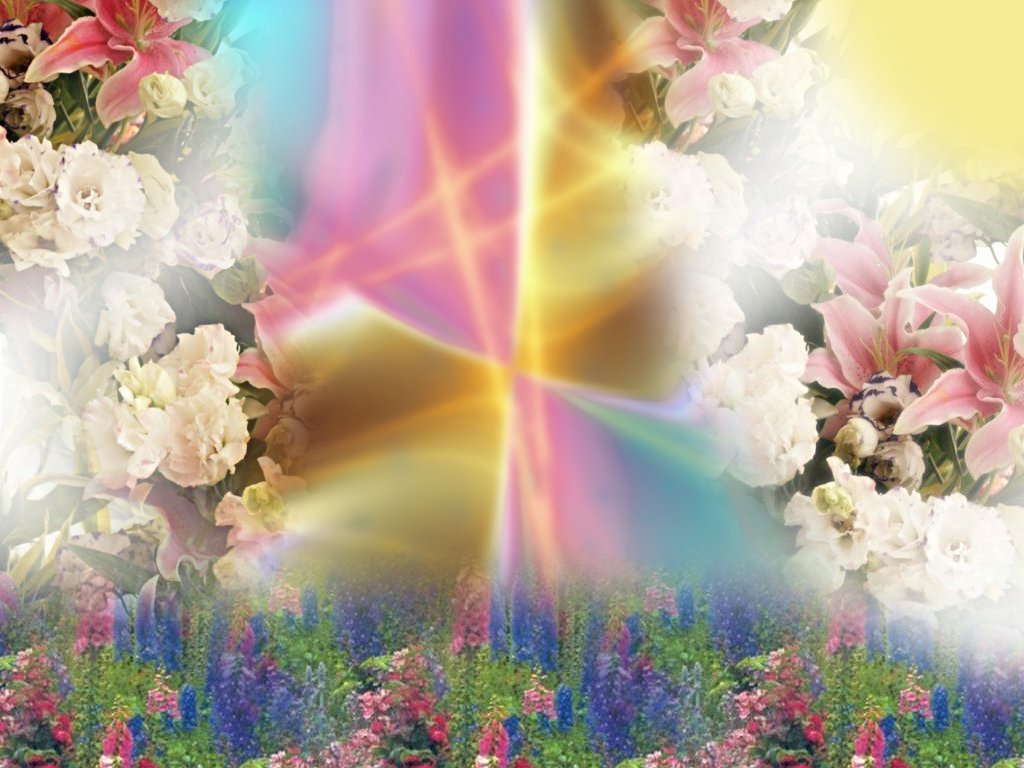 Popular   Wallpaper Home Screen Spring - spring+wallpaper+backgrounds+%282%29  Collection_4818.jpg