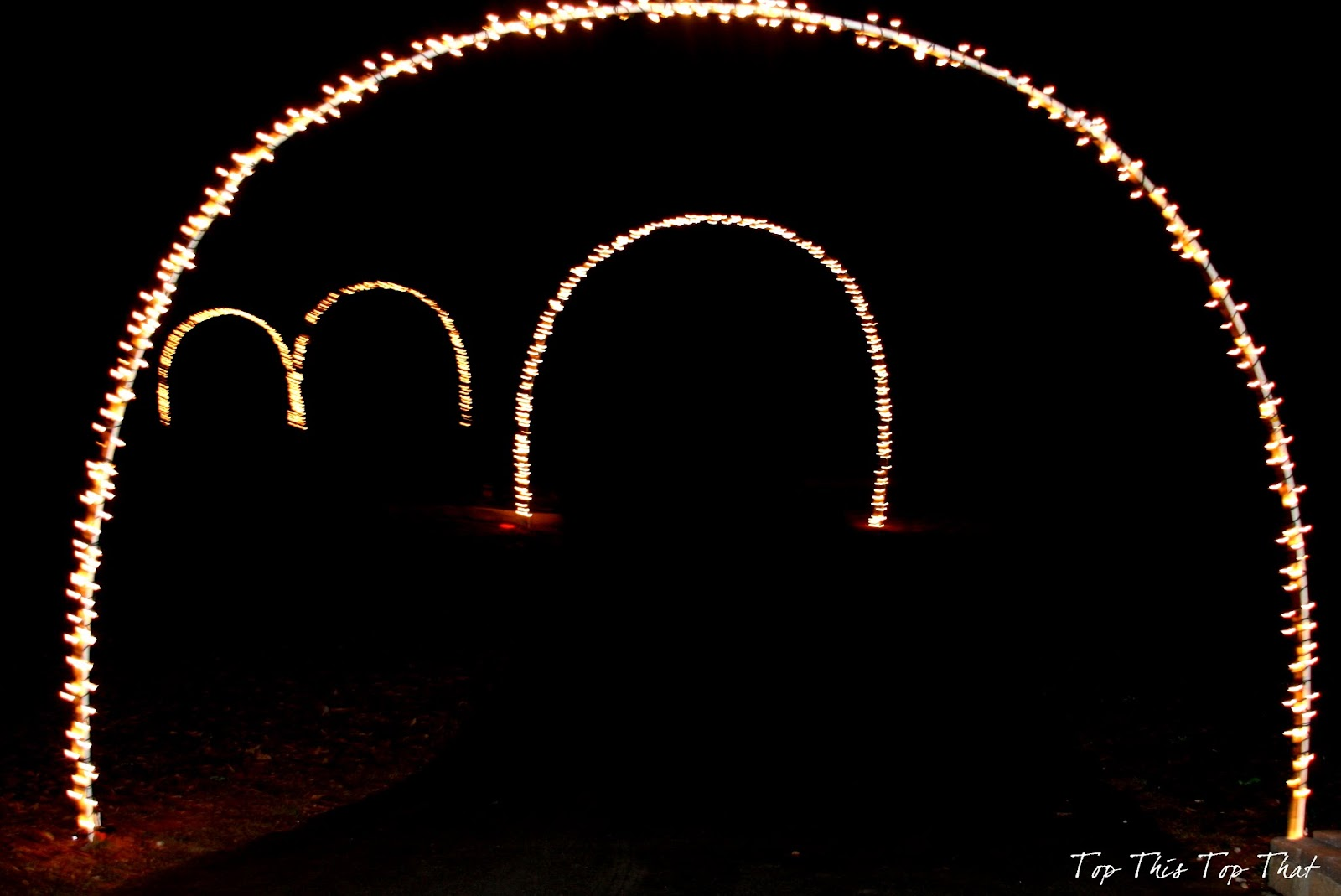 an area attraction is charging 6000 a car to drive through the holiday light exhibit that just seems like a lot of money