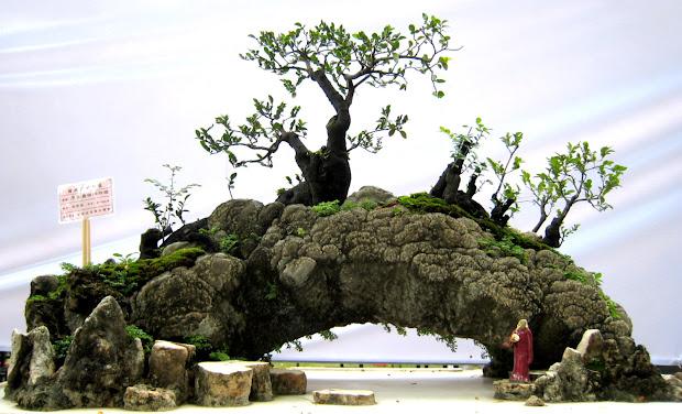 figurines in penjing bonsai