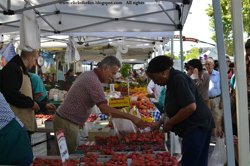 sunnyvale farmers markets photos photography saturday travel weekends