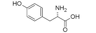 Tirosin (Tyrosine), Sumber, Fungsi, Manfaa, Dosis, Dan Efek Samping