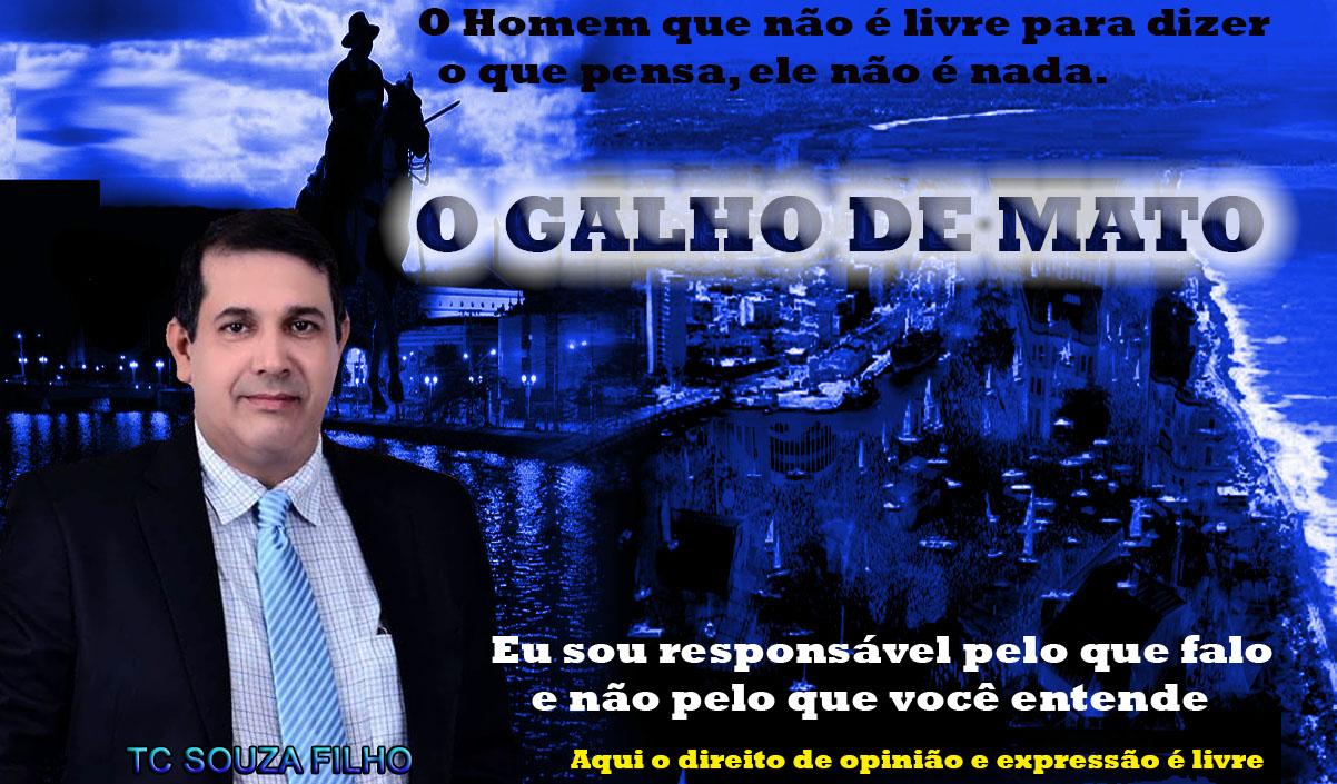 O GALHO DE MATO
