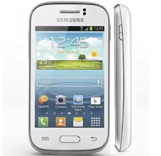 Harga Handphone Samsung Terbaru Juli 2014, Galaxy Young S6310