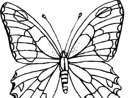 Butterfly Coloring Pages Crayola