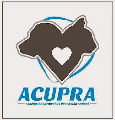 Asociación Cultural de Protección Animal - Ica