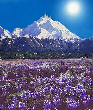 no alto da montanha esta Asgard