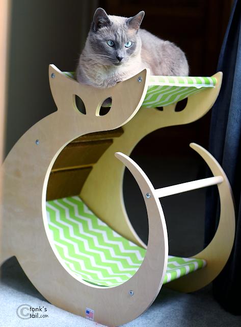 Siamese cat on lounger, cat hammock