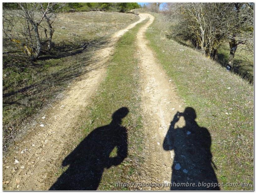 foto de las sombras en el camino