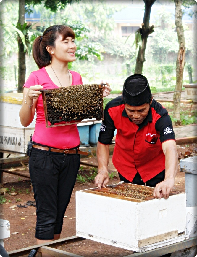 Taman Wisata Lebah Madu Pramuka Shooting Asal Usul