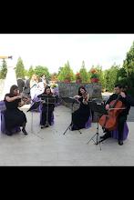 Membrii Cvartetului Concertino